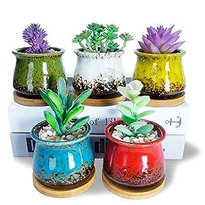 3.1 inch succulent pots 5pcs