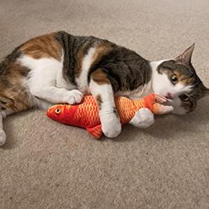 cat toys fish