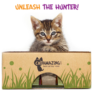 Cat Amazing Classic - Cat treat puzzle interactive cat toy puzzle feeder for active play