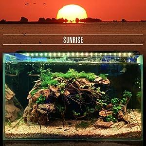 Sunrise-Daylight-Moonlight DEFAULT MODE (24/7 Natural Mode)