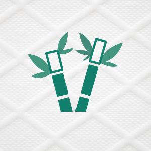 Bambus Bezug
