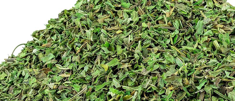 us wellness naturals peppermint mint tea tisane healthy supplements fresh green diet fitness drink