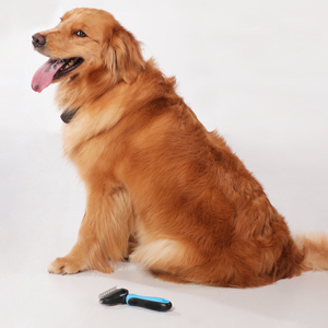 Use The Pet Dematting Grooming Comb Correctly Step 1
