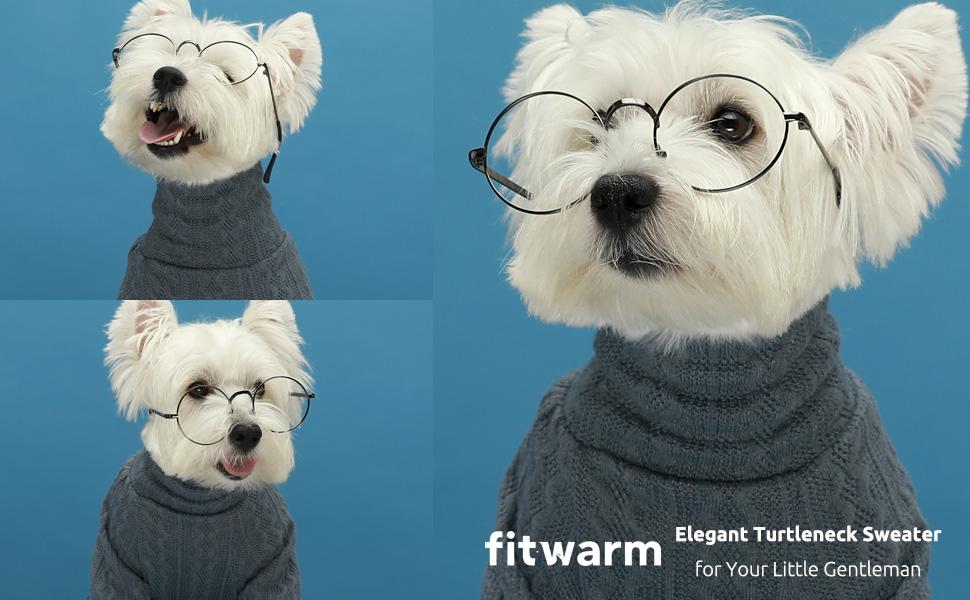 Dog cat puppy dog sweater