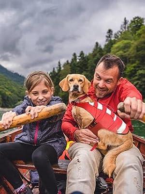 Dog life jacket large