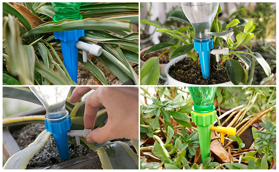 Vacances automatiques ASNOMY Accoco Lot de 12 appareils darrosage Automatique avec Interrupteur /à lib/ération Lente pour lentretien de Vos Plantes et Fleurs