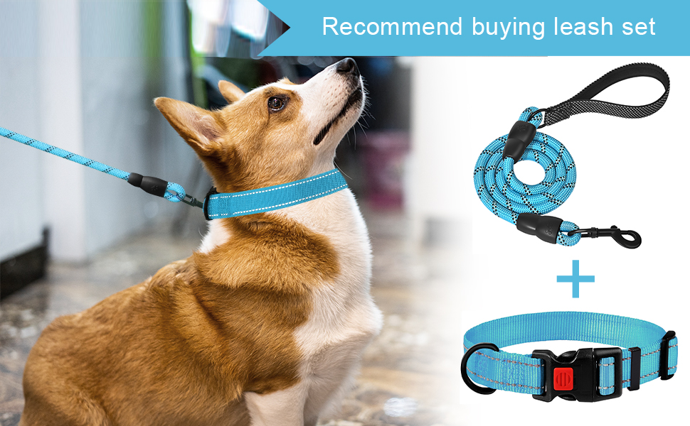 Dog collars reflective dog collar for large medium small dog collars  blue dog collar