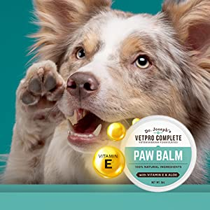 Moisturizing Relief amp; Protection Paw Balm for Pets protect from snow and sun