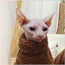 calming coatume kitten purty kitty sweater pouch main constume yorke neckwear puppy size