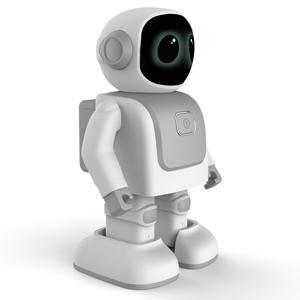 Cool-remote-control-robot-boys