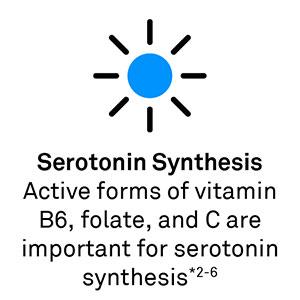 Serotonin Synthesis