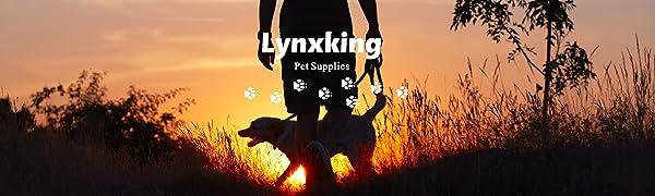 lynxking logo