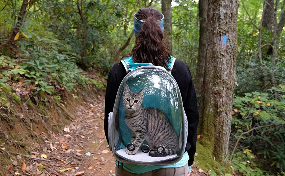 Cat Bubble Capsule Backpack