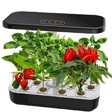 12 planting pods