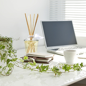 calming scent for office office scent options scent diffuser office scent defusers for office desk