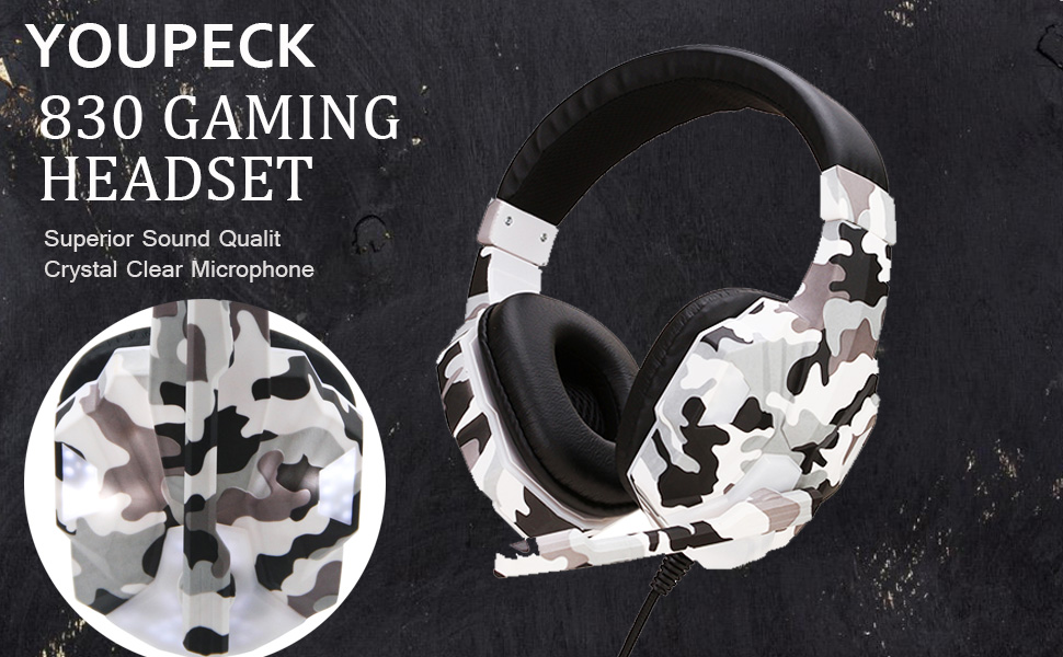 Noise Cancelling PC Headset with Mic