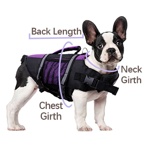 for small medium large dog swimming suit