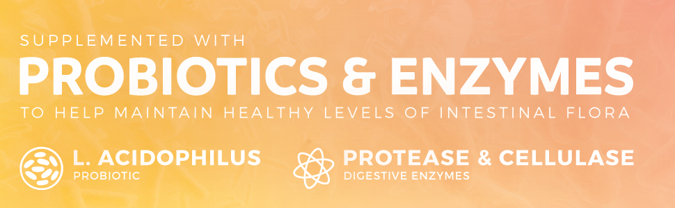 Probiotics Lacotbacillus Acidophilus, Protease and Cellulase supplement to maintain gut health