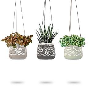 hanging planter pots indoor 23 bees