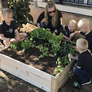 Boldly Growing Raised Bed Gardening kit planter box with legs elevated outdoor wood gardening