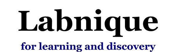 labnique logo