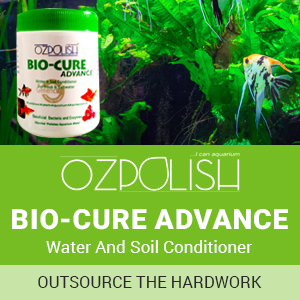 OZPOLISH Objective