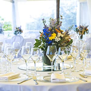 wine glasses, 10 oz wine glasses, 10 ounce wine glasses, wine glasses with steam, classic wine glass