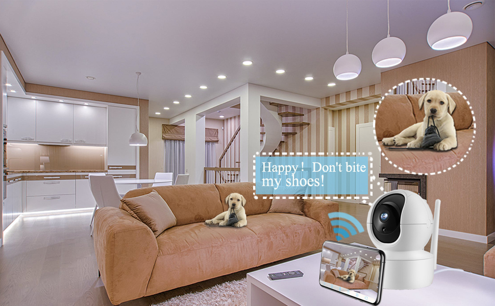 home cameras with app for phone