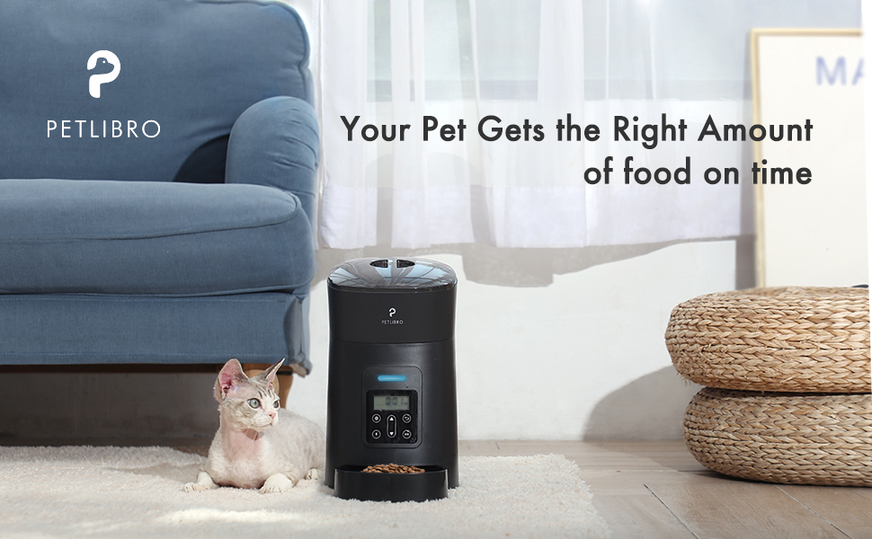 your pet gets the right amount of food on time