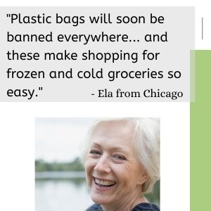 reusable shopping bags insulated cold groceries