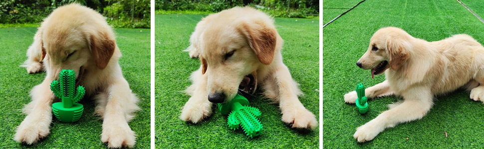 Durable Natural Rubber Chewing Interactive Toys