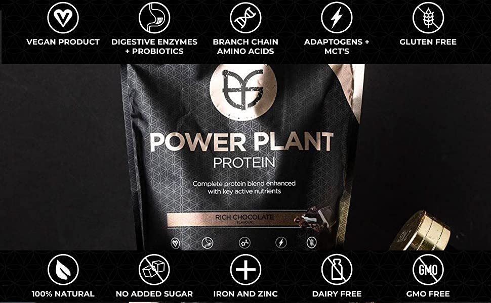 PranaOn Power Plant Rich Chocolate Protein Powder Organic Vegan Dairy Free Gluten Free Product