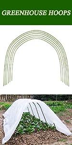 greenhouse hoops