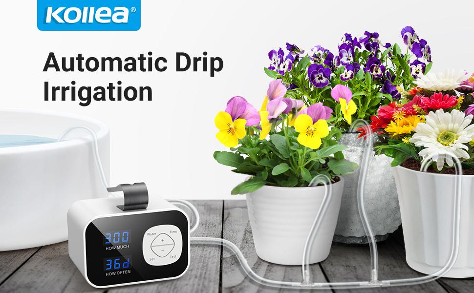 kollea automatic drip irrigation