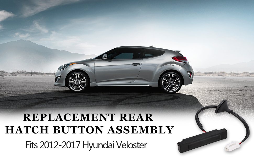 Premium Outside Hdl Lock Assembly-T Lid For Veloster 2012-2017 with Camera