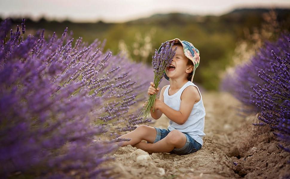 organic lavender boy in field