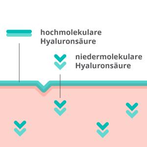 hochmolekular hyaloron hyaluronsäure