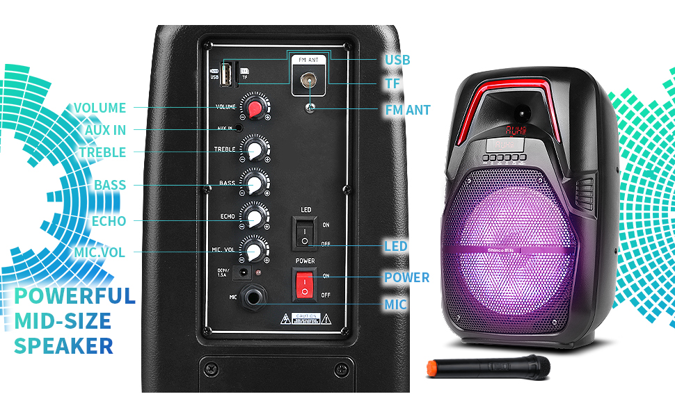 portable pa system wireless microphones