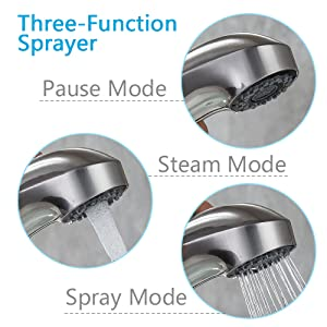 Three-Function Sprayer