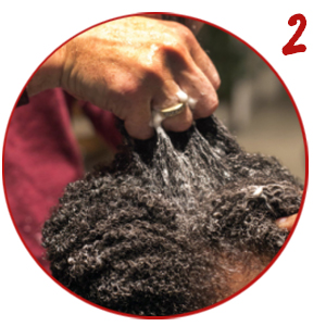curl sponge