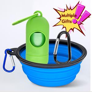 dog water set