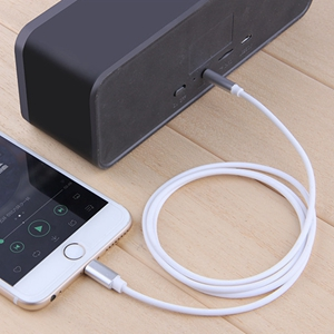 Apple MFi Certified lightning to aux cord