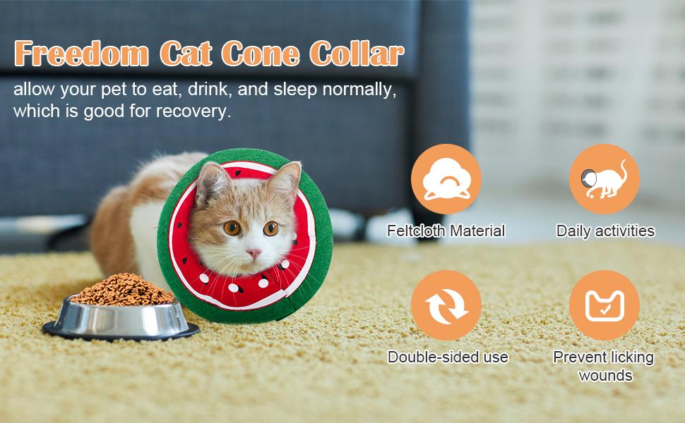 soft cat cone