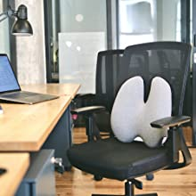 Cushion Lab Lumbar Pillow Using with Office or Computer Chair