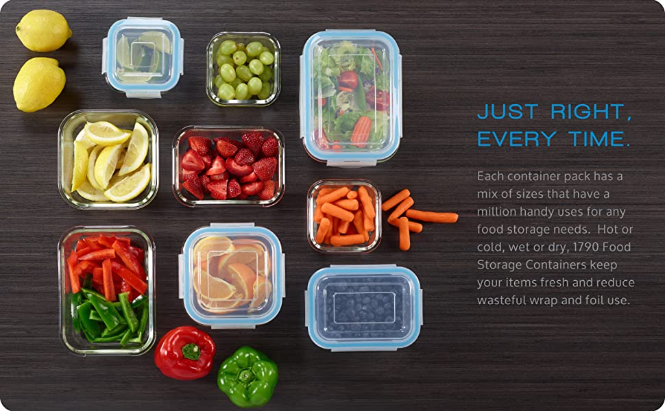 1790 Food Storage Containers food possibilities