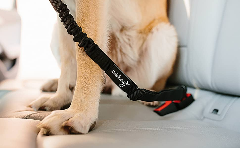 Sicherheitsgurt Hundegurt Anschnallgurt