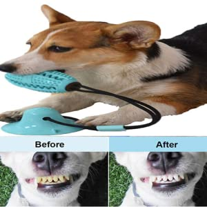 dog teeth cleaning dog toothbrush toy