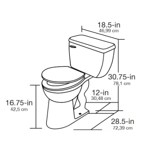 ADA Toilet