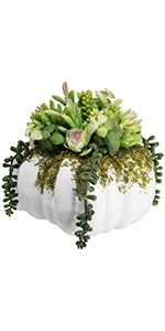 winemana Thanksgiving Decorations Pumpkin with Artificial Succulents