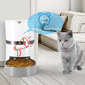 cat feeder automatic